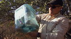 Watch Dangerous Encounters - Cobra in a Cooler Online