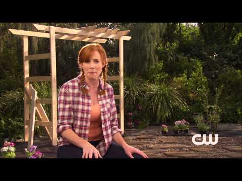 Watch Hart of Dixie - Hart of Dixie - Springtime in Bluebell Flagstone Patio Online