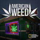 American Weed Season 1 Episode 1