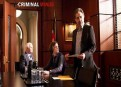 Watch Criminal Minds Season 8 Episode 19 - Pay It Forward Online