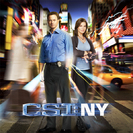 CSI: NY Season 8 Episode 1