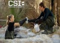 Watch CSI: Crime Scene Investigation Season 13 Episode 20 - Fearless Online