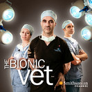 Watch The Bionic Vet Season 1 Episode 4 - Ice and Neo Online